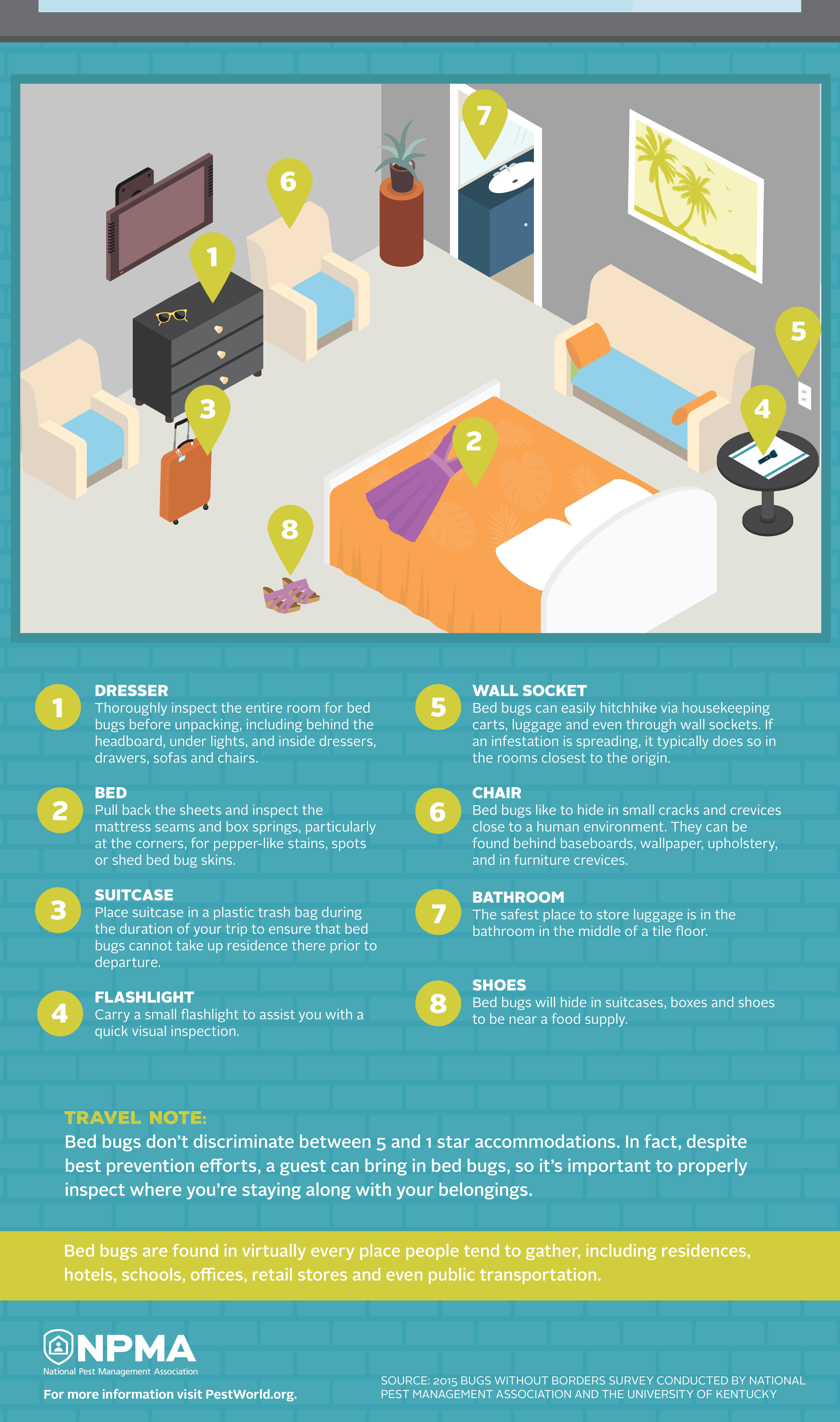 bedbug-hotel-infographic-053117